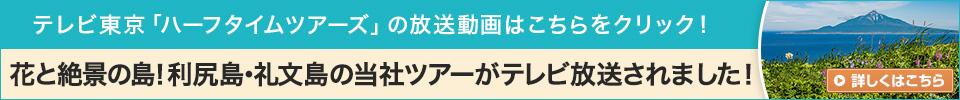 花とウニの島!利尻島・礼文島の当社ツアーがテレビ放送されました!