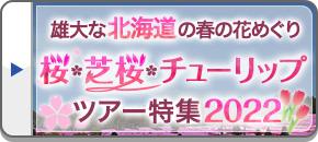 桜・芝桜・チューリップツアー・旅行