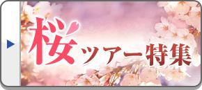 桜ツアー特集