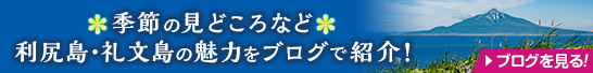 季節の見どころなど利尻島・礼文島の魅力をブログで紹介!