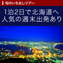 1泊2日で北海道へ!人気の週末出発あり