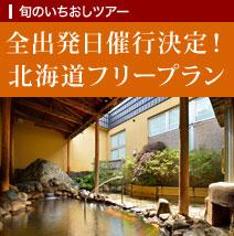 全出発日催行決定!北海道フリープラン