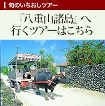 『八重山諸島』へ行くツアーはこちら