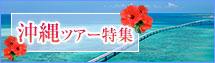 沖縄ツアー