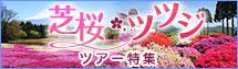 芝桜・ツツジツアー特集