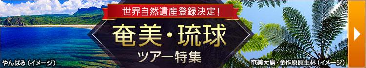 奄美琉球ツアー特集
