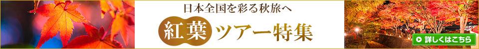 紅葉ツアー・旅行2019