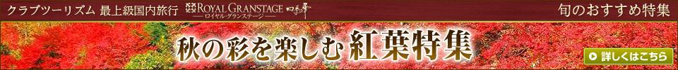 秋の彩を楽しむ紅葉特集