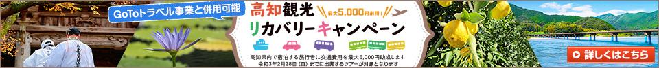 旅で応援しよう!「高知観光リカバリーキャンペーン」活用ツアー特集