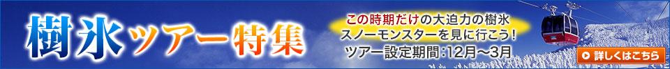 樹氷ツアー・旅行(蔵王・八甲田など)