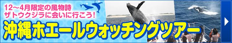 沖縄ホエールウォッチングツアー特集