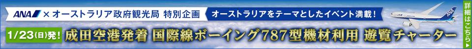 国際線ボーイング787型機材利用 遊覧チャーター