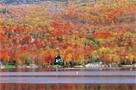 紅葉のカナダ特集