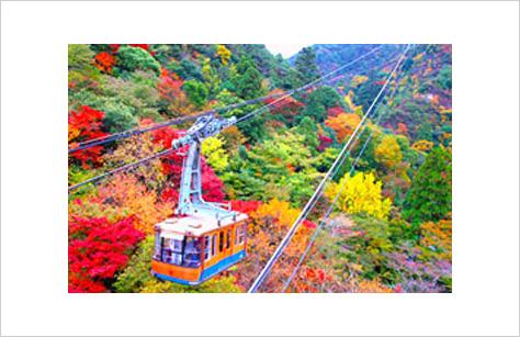 「六甲山 紅葉」の画像検索結果