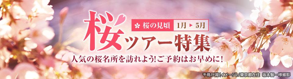桜・お花見ツアー・旅行2020