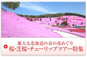 北海道の桜・芝桜・チューリップツアー特集