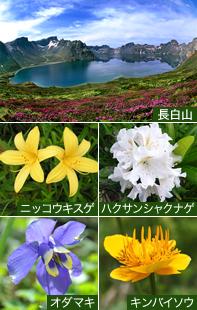 長白山(イメージ)