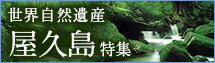 世界遺産 屋久島ツアー・旅行