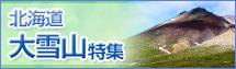 北海道大雪山ツアー・旅行
